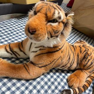 虎のぬいぐるみ🐅