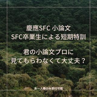 慶應 SFC 小論文 短期集中講座