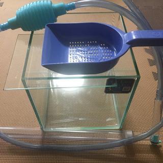 レグラス コトブキ 20センチ 水槽
