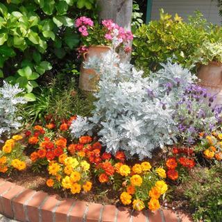 花壇やフェンスの制作、工具貸出し無料でdiyのお手伝いも行ってます!