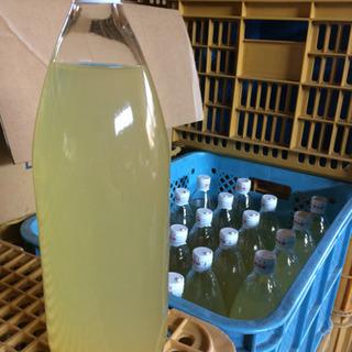 果汁100%果樹農家自家製りんごジュース