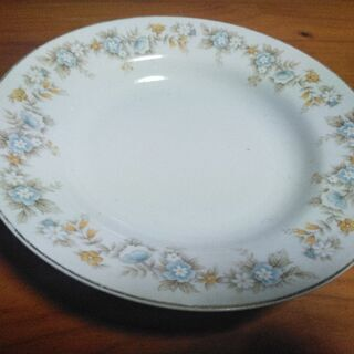 洋皿lG(ほとんど未使用)