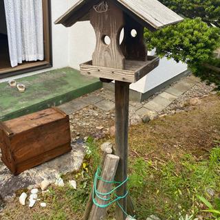 屋根付き🏠小鳥の集会場