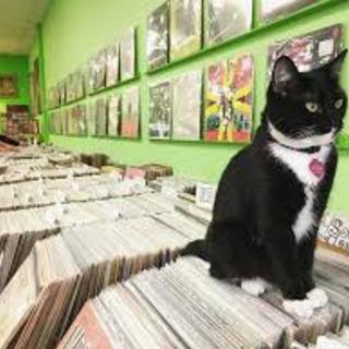 【 仙台 】レコード買います!なんでもOK!本の引き取りも!