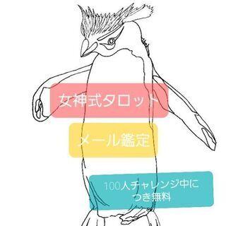 無料♡女神式タロット/メール鑑定/限定30名様