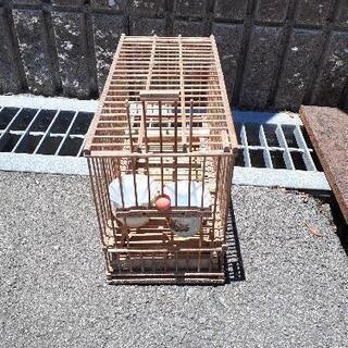 レトロな?竹籠の鳥かご