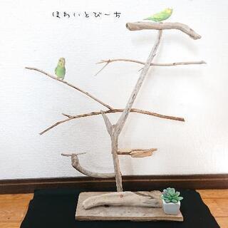 流木止まり木・バードタワーNo.23