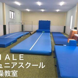 四街道体操教室!夏の体験会【VIALEジュニアスクール】