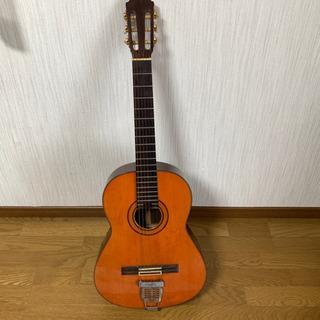 Eichi Kodaira Luthier E300 クラシック...