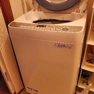 シャープ コンパクト洗濯機