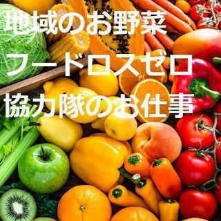 浜松のお野菜を大切に!!地域のお野菜フードロスゼロ協力隊 募集!...