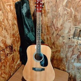 Vanguard アコースティックギター VDG-01 TS