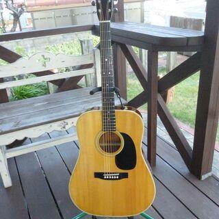 アリアW-18アコースティックギター