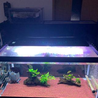 熱帯魚 用品 販売 90cm規格水槽セット バラ売り応相談