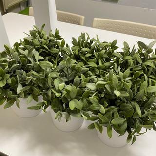 【最終値下げ!】 IKEA 人工観葉植物+植木鉢 6個セット