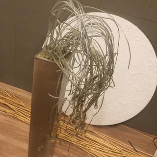 幻想的なフロアスタンド照明 - 家具