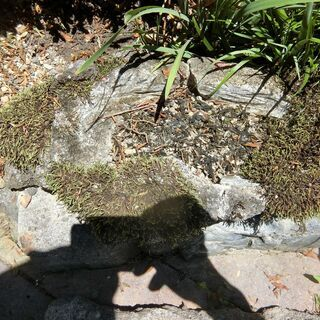山野草石付け用景観石