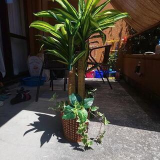 【ネット決済】フェイクグリーン✩.*˚観葉植物
