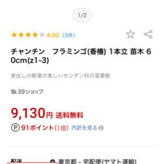 【ネット決済】香椿(ちゃんちん)(完全予約制:冬~春限定)