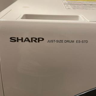 2019年 SHARP ドラム式洗濯機 お譲りいたします。