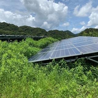 太陽光発電所の草刈りはお任せ下さい!