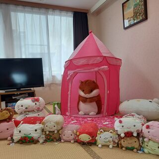 (●^o^●)お姫様ハウス(3歳時前後の女の子対応)