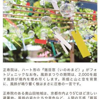 8/22(日)京都の風鈴寺🎐風鈴まつりに涼みに行きませんか??⭐