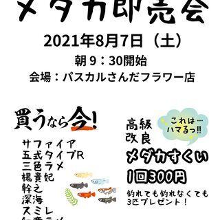明日の土曜日(8月7日)メダカ即売会&メダカすくいinパスカルさ...