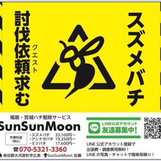 【ハチ退治】福島・宮城のハチ駆除🐝の依頼(クエスト)承ります!!