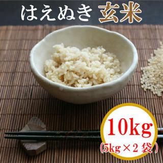 山形県庄内産 令和2年産 はえぬき 玄米10kg(5kg×2袋)