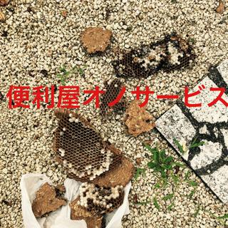 格安価格‼︎蜂の駆除、ゴキブリ駆除、ヘビ駆除、コウモリ − 愛知県
