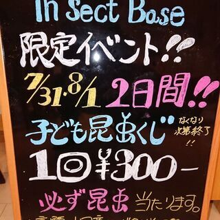 insectbase 好評につき 夏休み終わりだよ‼️子供…