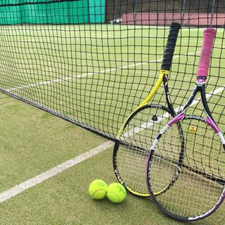 テニスしたいので協力してくれませんか?
