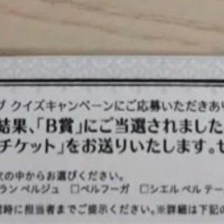 【ネット決済】有効期限なし 20万円分のハネムーンチケット