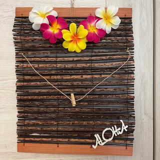 Hawaiian簾③