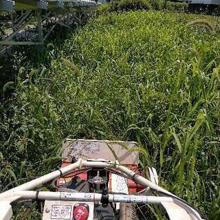 草刈り代行致します