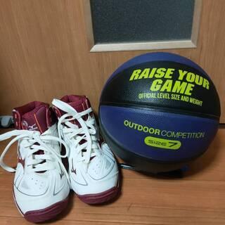 バスケットボール7号 バスケットボールシューズ(ランバートMIZ...