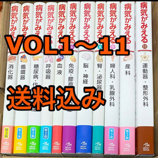 【ネット決済・配送可】病気がみえる11冊セット
