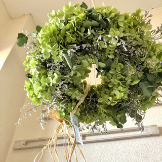 アナベル紫陽花フライングリース
