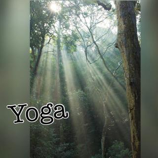Yoga、体験からいかがですか?