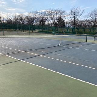テニスヒッティングとレッスン教えます!!