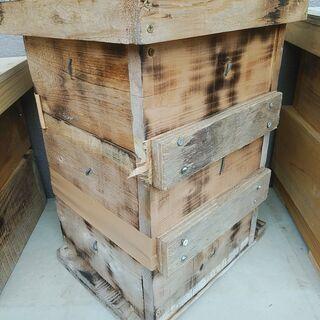 日本蜜蜂の重箱式巣箱 待ち箱