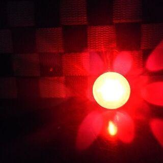 ペット用光るライト(2度使用) - 札幌市