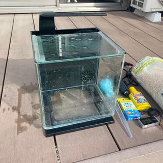 テトラ リビングキューブ12 水槽 飼育セット