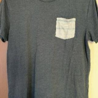 HOLLISSTER Tシャツ