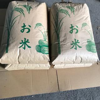 秋収穫後の(令和3年産)新米。玄米30㎏入り!