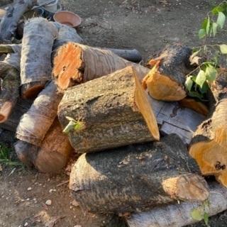 あげます 木材④ キャンプ槇など 工芸材