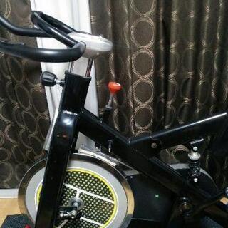 HAIGE スピンバイク エアロフィットネス HG-YX-…
