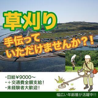 【急募です!】草刈り🌱アルバイト