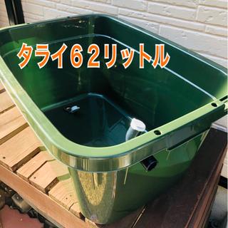 メダカ飼育ケース【タライ62リットル】
